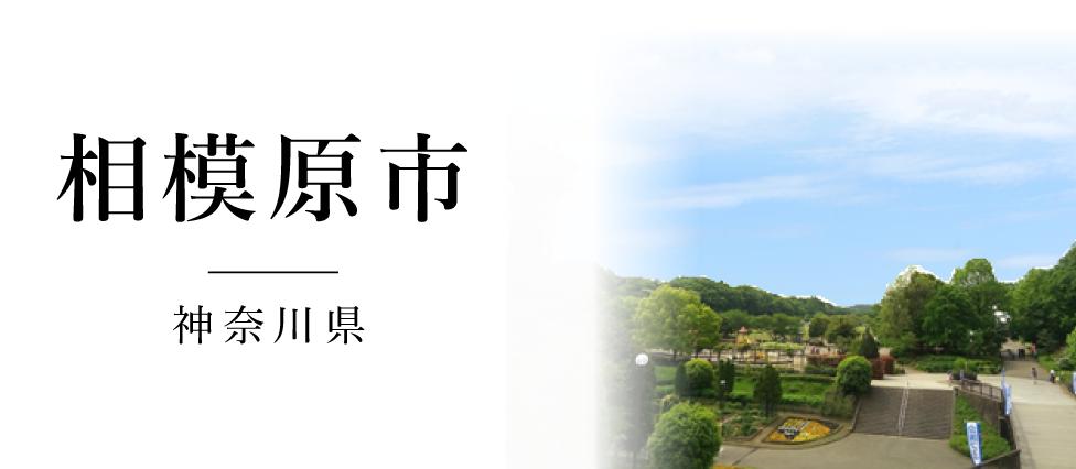 相模原 神奈川県