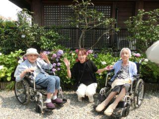紫陽花観賞に行ってきました!