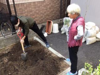 🥒新しい野菜の苗を植えました🍅