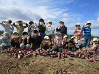芋ほり遠足(5歳児)